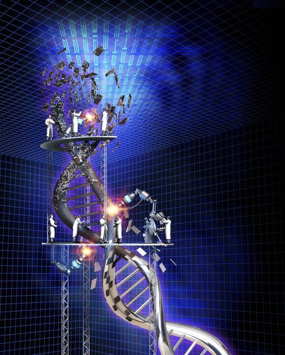 B0006858 Engineering DNA