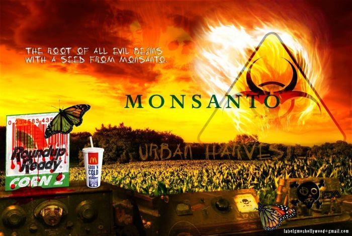 monsanto-gmo-seed-of-evil-03-21-2013