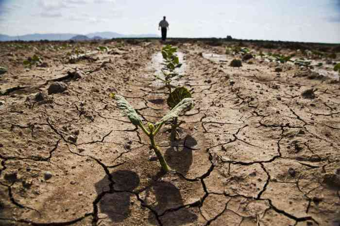 Orig.src_.Susanne.Posel_.Daily_.News-geoengineering.drought.famine_occupycorporatism